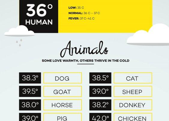 Temperature Matters - Infographic