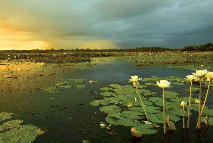 Explore Kakadu National Park