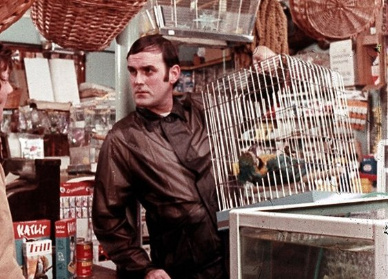 The Unknown Hero Who Saved Monty Python's Flying Circus From Being Erased :: Monthly :: Features :: Paste