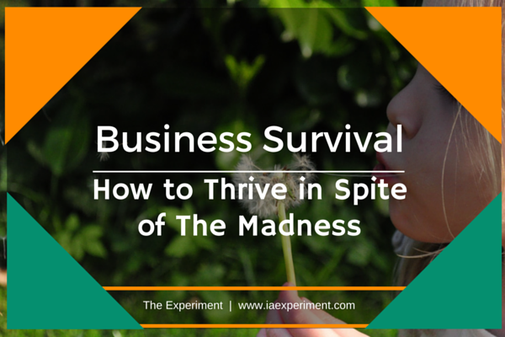 Business Survival: How to Thrive in Spite of The Madness - The Experiment