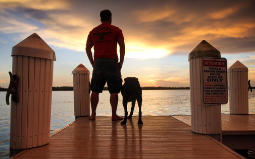 Man takes terminally ill dog on farewell cross-country road trip