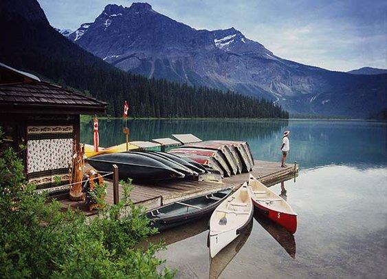 Photo Gallery   Field   Canadian Rocky Mountain Resorts