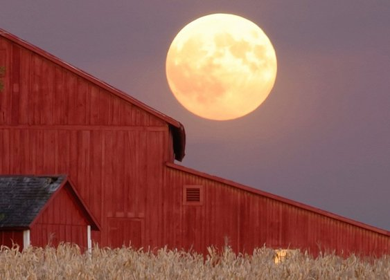 GM Blog: What You Need to Know about the Full Harvest Moon (and Eclipse)