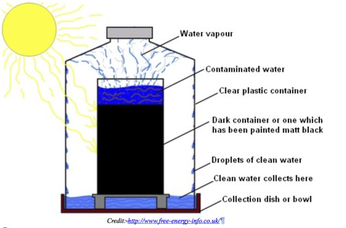 How To Build A Solar Still For Survival