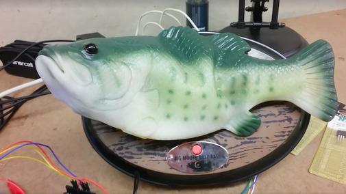 Man hacks Alexa into singing fish robot, terror ensues - The Verge