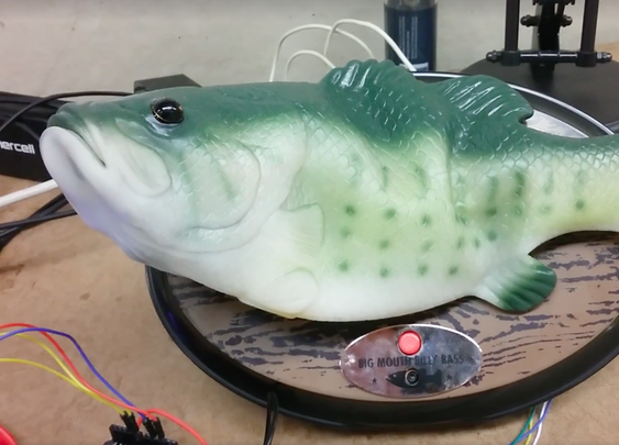 Man hacks Alexa into singing fish robot, terror ensues - The Verge