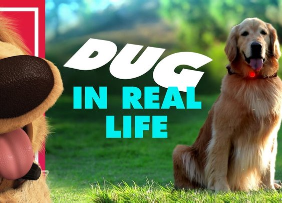 Disney•Pixar's Dug the Talking Dog In Real Life | Oh My Disney IRL - YouTube