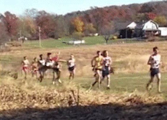 Cross-Country Runner Hit by Deer