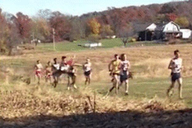 Cross-Country Runner Hit by Deer