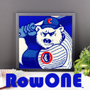 Chicago Cubs gift Ideas