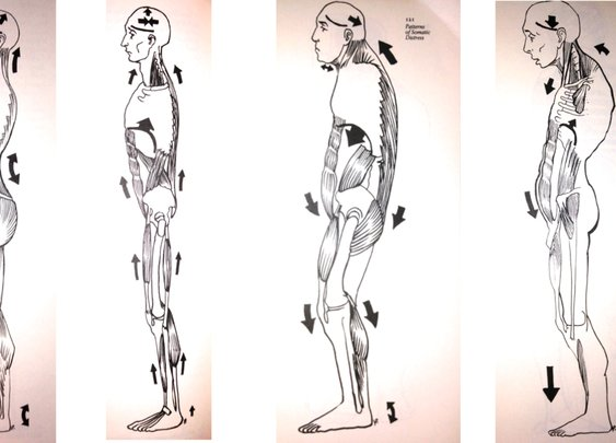Habitual posture. Habitual emotion. Habitual thought. « olivier goetgeluck