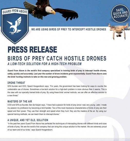 Guard From Above |We are using birds of prey to intercept hostile drones