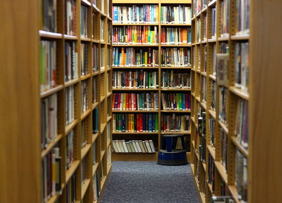 Why a Fake Patron Named 'Chuck Finley' Checked Out 2,361 Books at This Florida Library Last Year