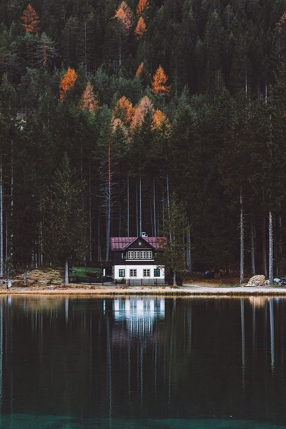 Scenic Cabin on the Lake.