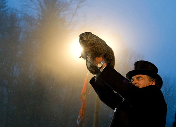 11 Punxsutawney Phil Facts for Groundhog Day
