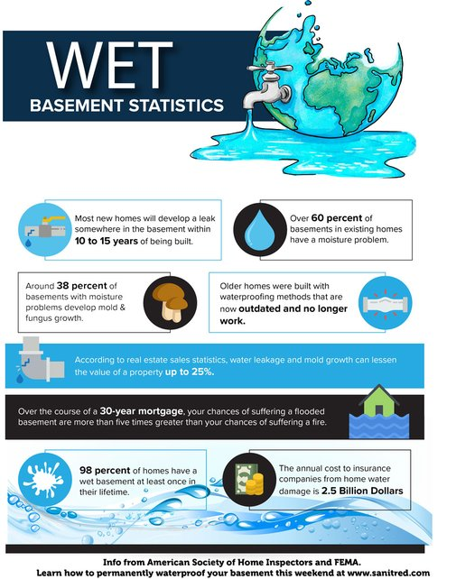 Basement Waterproofing Facts Infographic