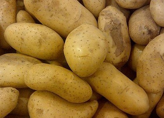 Horrific Tales of Potatoes That Caused Mass Sickness and Even Death     |    Arts & Culture | Smithsonian