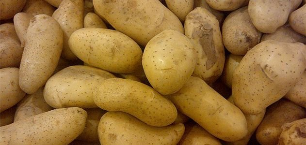 Horrific Tales of Potatoes That Caused Mass Sickness and Even Death          Arts & Culture   Smithsonian