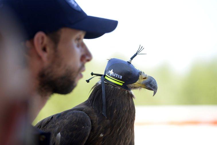 Dutch police eagle on standby
