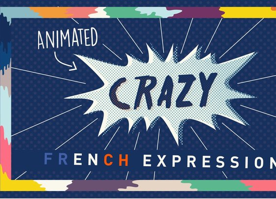 Sacrés Français! Crazy French Expressions Animated [GabeMAX]