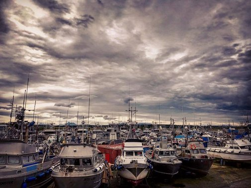 Welcome to the boat yard. Each boat... - Bristol Bay Sockeye Salmon | Facebook