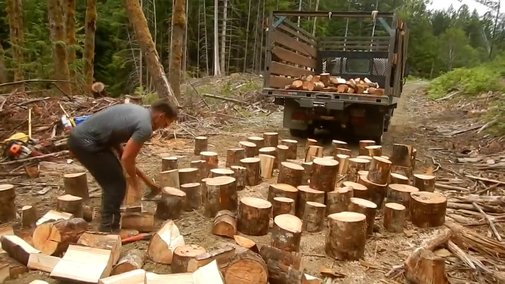 Splitting Logs with Two Axes