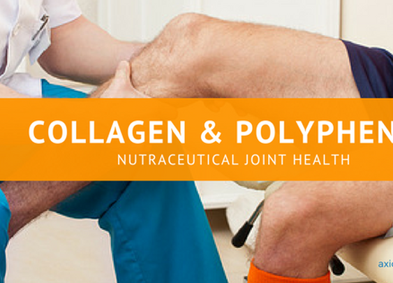 Collagen and Polyphenol Nutraceuticals Provide Joint Health – Axios Nutra