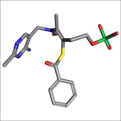 Benfotiamine May Delay the Progression of Alzheimer's Disease — BioFoundations