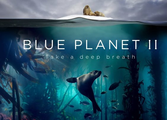 Blue Planet II : The Prequel - YouTube