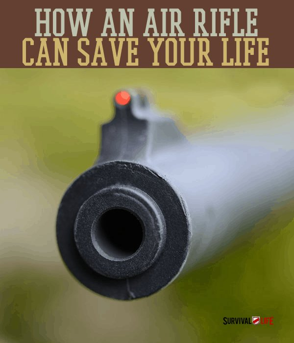 How Air Rifles Can Be Used for Survival   Survival Life