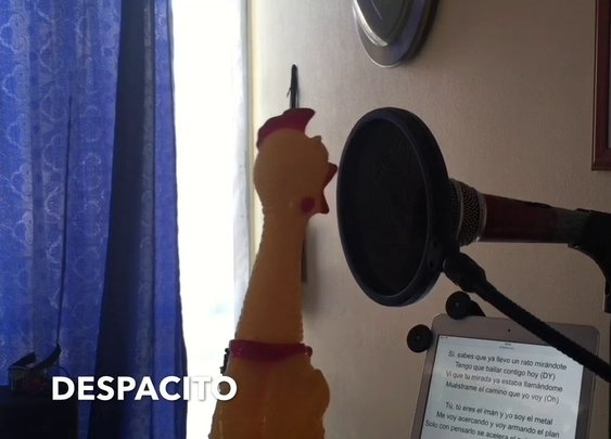 Despacito Chicken Version (Mr. Chicken)