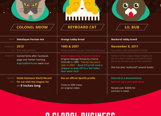 Why is the Internet Obsessed with Cats (Infographic)? - Pet Life Today