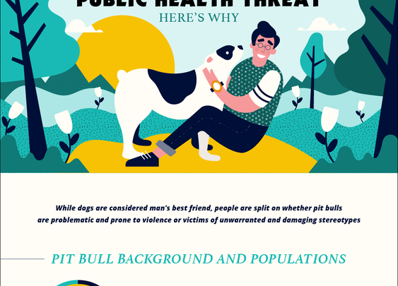Pit Bulls Aren't a Public Health Threat. Here's Why. - Online Masters In Public Health