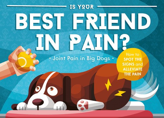 Joint Pain in Dogs [INFOGRAPHIC] – Big Barker