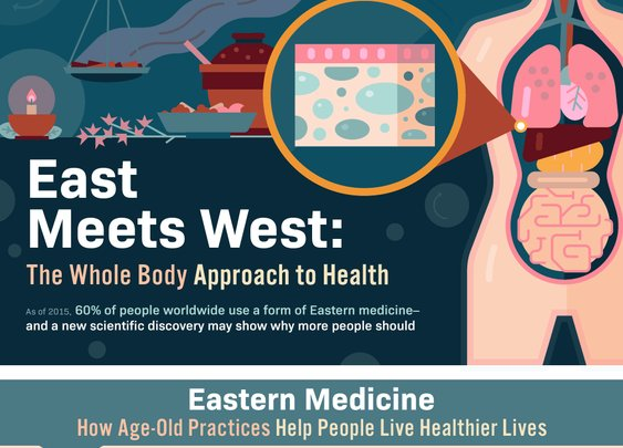 East Meets West: An Infographic on the Interstitium   Urban Monk Nutrition