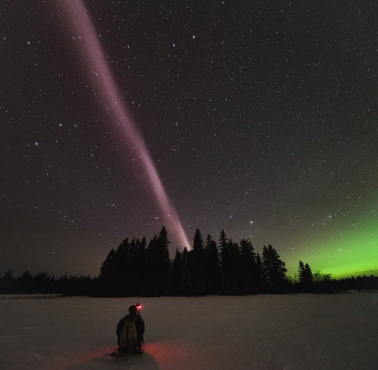 Eerie Skyglow Called 'Steve' Isn't an Aurora, Is 'Completely Unknown' to Science