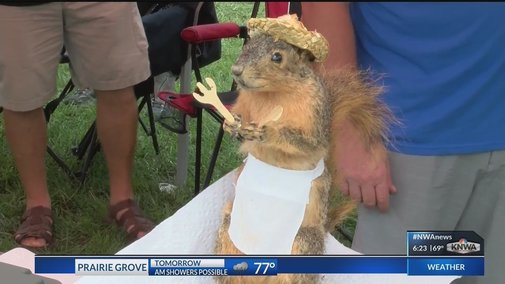 People Go Nuts Over World Champion Squirrel Cook Off