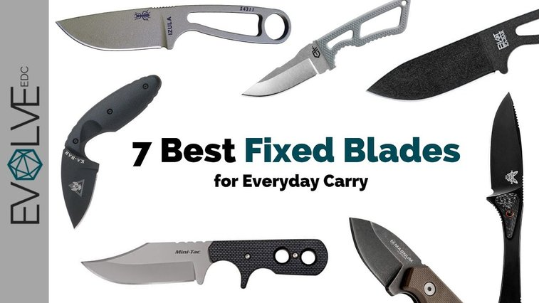 7 Best Fixed Blade EDC Knives - YouTube
