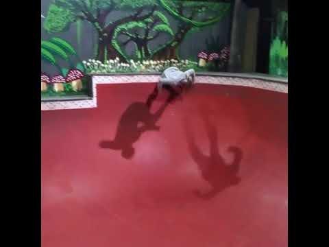 Mr. Rogers On a Skateboard