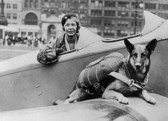 The Weird Tale of the Paradogs of World War II