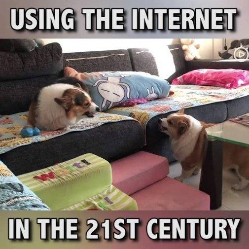 21st Century Debating (warning, tons of cussing)