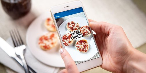 Domino's Pizza-Spotting App Is a Window Into a Future of Justified Paranoia