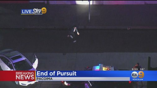 Car Chase Ends In the Most Bizarre Way Possible