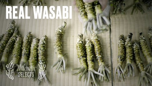 The Truth About Wasabi - YouTube
