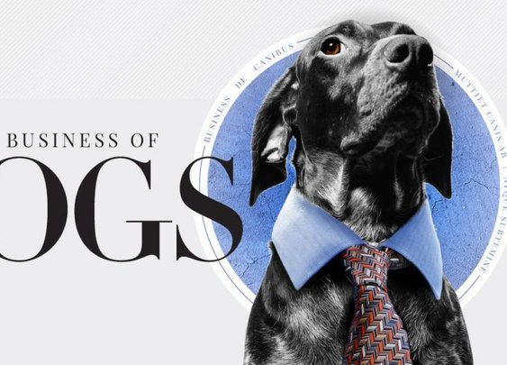 The Business Of Dogs Infographic   TruDog®
