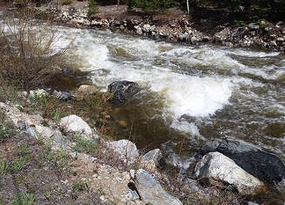 Wild Water Woes and What To Do
