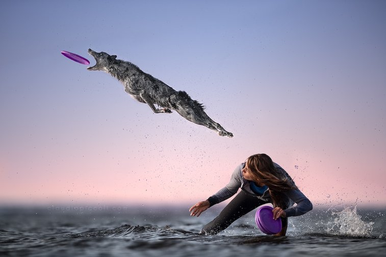 Mesmerizing Photos of Dogs in Mid-Air by Claudio Piccoli