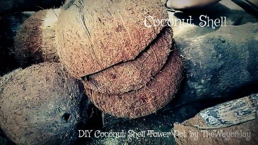 How To Make Coconut Shell Tower Pot - YouTube