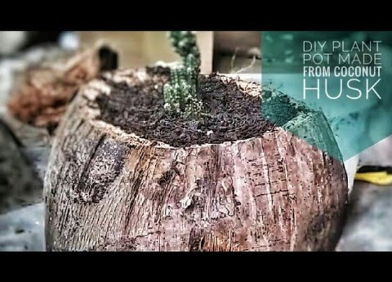 DIY Plant Pots Made From Coconut Husk - YouTube