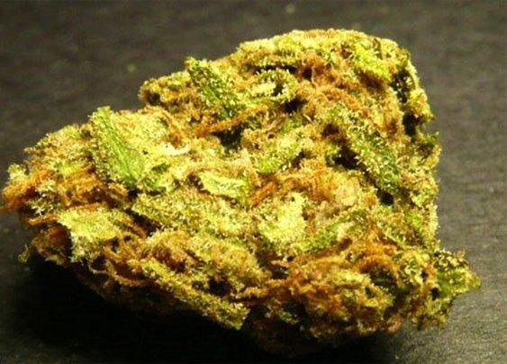 Dream Queen Weed | Sativa Marijuana Strain | Pot Valet